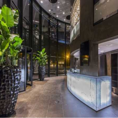 Indoor Plants Hire For Hotel