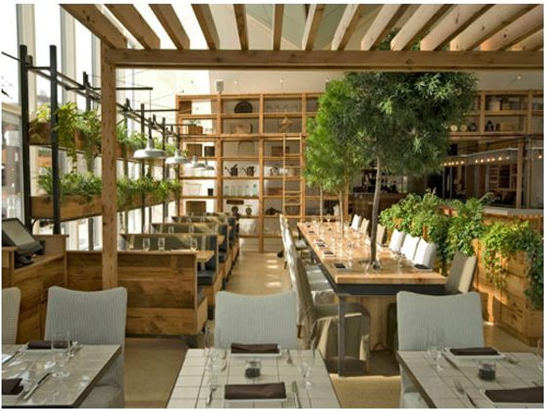 Visit Our Indoor Plants Gallery Inscape Indoor Plant Hire