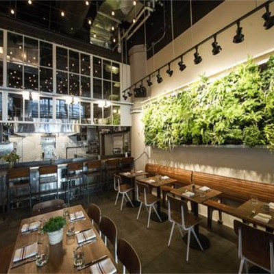 Restaurants Indoor Plants Hire