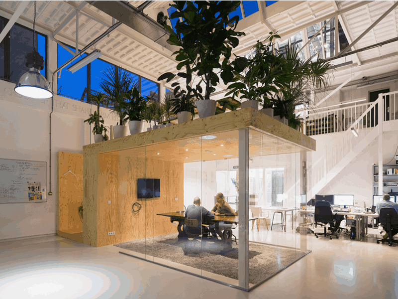 Corporate Office Open Plan 007