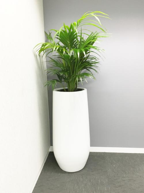 Premium Urn Planter