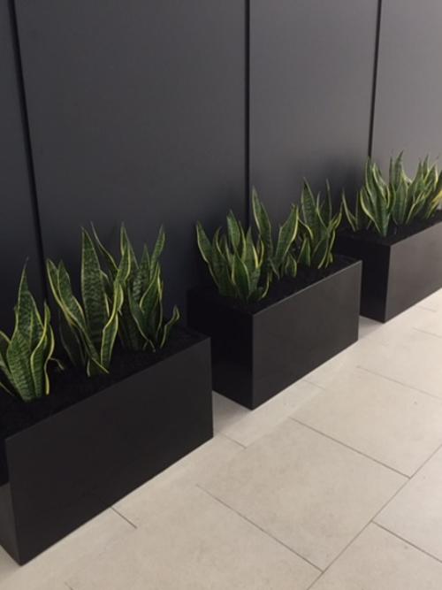 Premium Planter Box