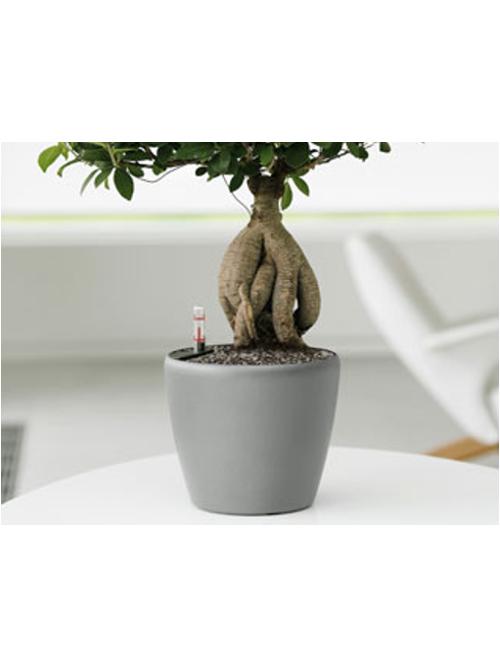 Premium Round Desk Planters 001