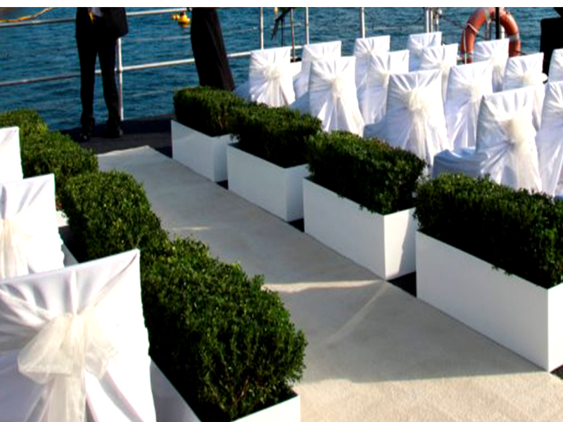 Events & Weddings 005