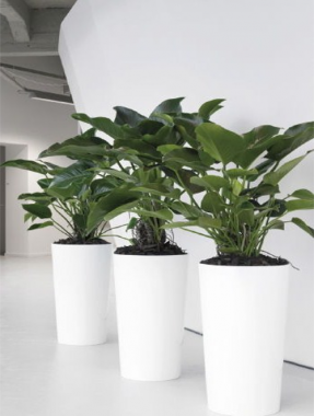 Round White Floor Pots