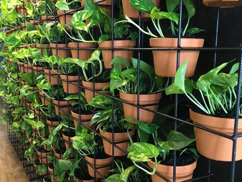 Vertical Garden Racks
